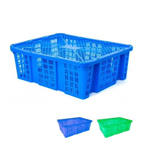 Caja Bamba'O